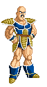 Nappa by Team OS
